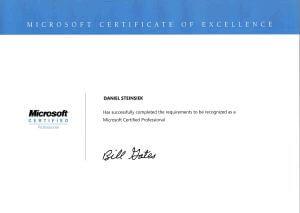 Microsoft Partner scs
